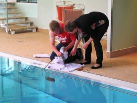 Pool/ Hotel-die Forelle