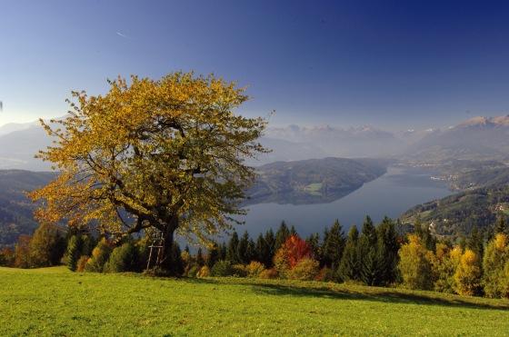 Landschaftsbild (C) Franz Gerdl KW