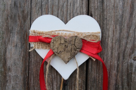 heart-3124865_1920.jpg